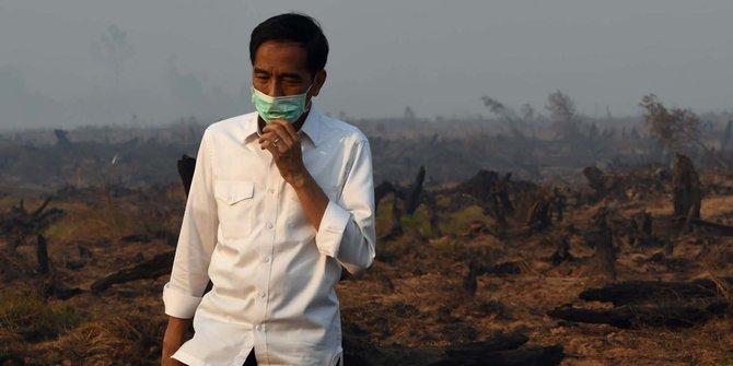 jokowi dan kebakaran lahan via google