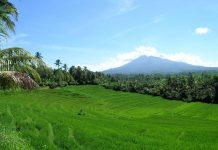 alam-indonesia