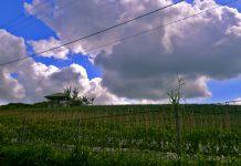 Pemandangan Pegunungan Desa Kalipucang Kecamatan Tutur Kabupaten Pasuruan