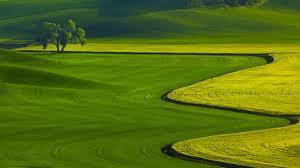 tanah land