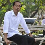 (Sikat, Jok!!!) Kisah Jokowi dan Kodok Istana